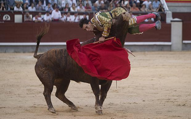 Mandatory Credit: Photo by DYDPPA/REX Shutterstock (4774952b)  Bullfighter Jimenez Fortes is gored in the neck  San Isidro Bullfight Festival, Madrid, Spain - 14 May 2015